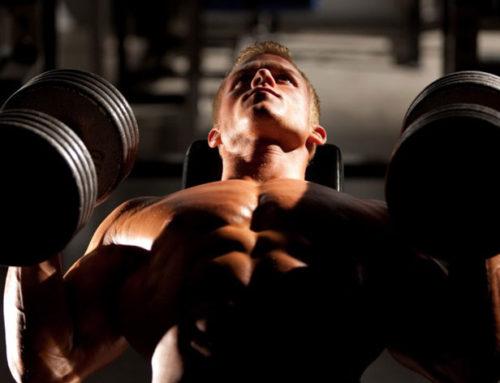 Synergetische Übungen – richtiger Muskel- und Kraftaufbau!