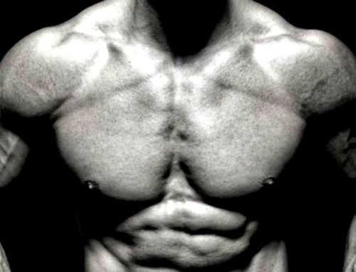 Richtiges Brusttraining – kräftige und große Brustmuskeln bekommen