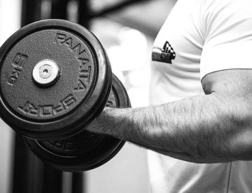 Muskelaufbau und Krafttraining mit Isolationsübungen